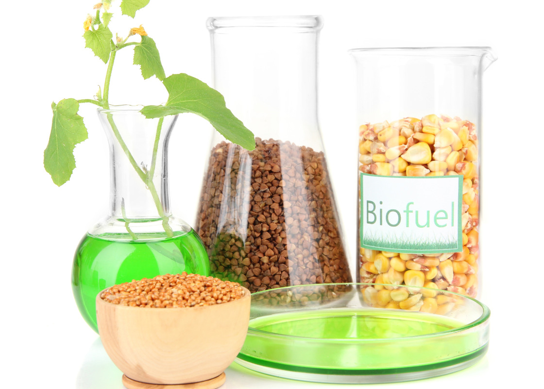 Buchumschlag von Sustainable production of second-generation biofuels