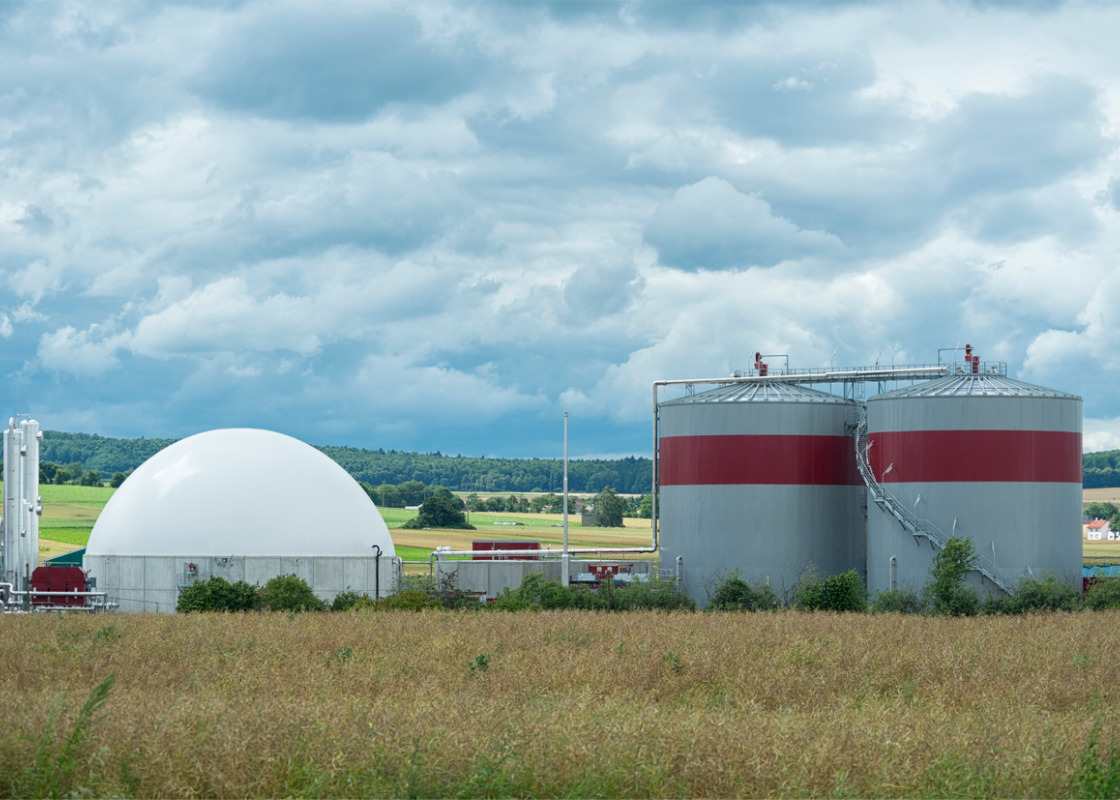 Buchumschlag von Biogas Upgrading and Utilisation