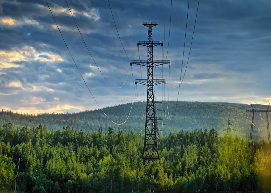 Buchumschlag von Bioenergy's role in balancing the electricity grid and providing storage options – an EU perspective
